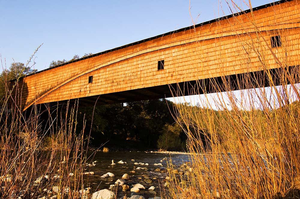 bridge_willows_sunrise